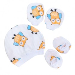 Shawn's Baby Infant Hat Glove and Sock Owl cartoon